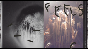 a dyphtych image of Monotropa uniflora on the right and a hazey atmospheric image on the left. Dark marks that look like letters are placed across the two images. Text reads Feels Data